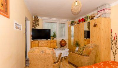 Veľký jednoizbový byt s potenciálom na prerábku 3D Model