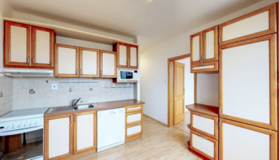 3 izbový byt v centre mesta Šamorín | PREDAJ 3D Model
