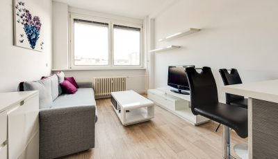 Krásny jednoizbový byt na Kramároch 3D Model