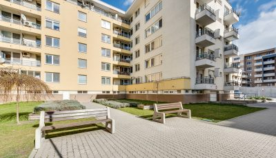 Dvojizbový apartmán – nebytový priestor na Galvaniho ulici 3D Model