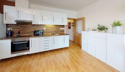 Veľkometrážny dvojizbový byt v Podunajských Biskupiciach 3D Model