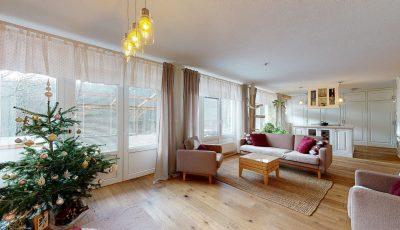 Veľkorysé bývanie v nádhernom prostredí Malých Karpát 3D Model