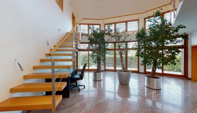 Rezidencia pre viacgeneračné bývanie alebo bývanie a podnikanie. 3D Model