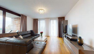 Slnečný 3-izbový byt v Parkville 3D Model