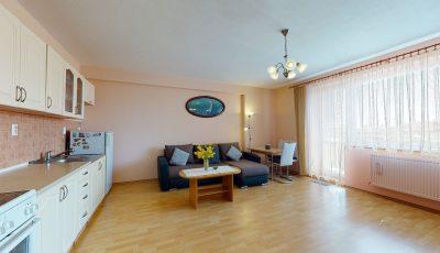 Veľký 1-izbový byt v centre Senca 3D Model